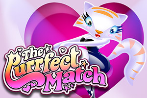 the-purrfect-match