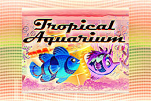 tropical-aquarium
